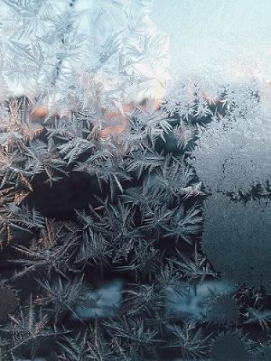 tips-para-sacar-fotos-en-la-nieve