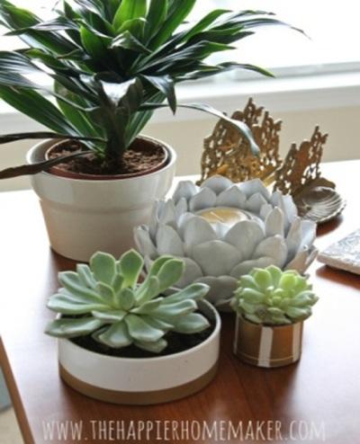Pot bunga terbuat dari pipa PVC (paralon)