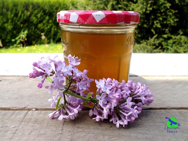 Gelee de lilas recettes plantes sauvages unisversnature