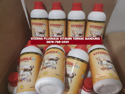 Toko Viterna Plus Nasa Bandung