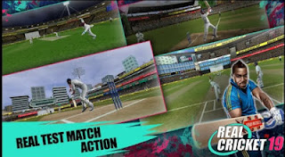 Real Cricket ™ 19 (MOD, Unlimited Money)