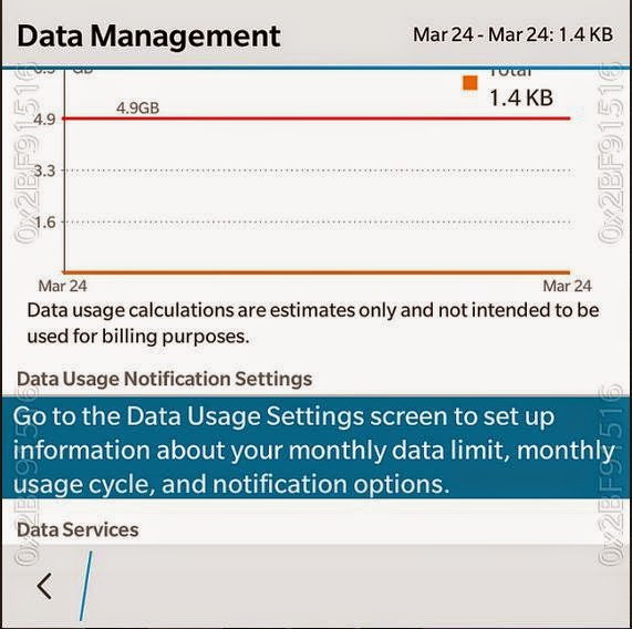 data management blackberry