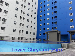 TOWER CHRYSANT