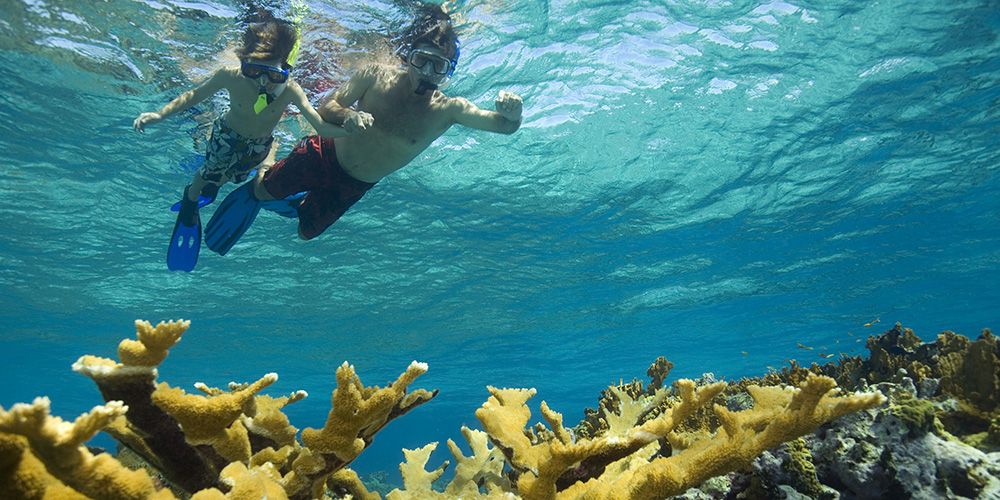 6 Best Things To Do In Bahamas