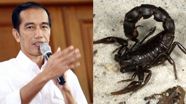 Sama dengan Ternak Kalajengking, Isu 'Tabok' Jokowi Dinilai Hanya Pengalihan Isu Utama