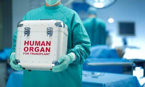 Δωρεά οργάνων, δωρεά ζωής στο Πανεπιστημιακό Νοσοκομείο Ιωαννίνων. Η λήψη οργάνων έγινε από 66χρονη γυναίκα που νοσηλευόταν στη ΜΕΘ και δεν κατάφερε να κερδίσει τη ζωή.