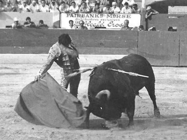 Foto: Dr. Alberto Cáceres