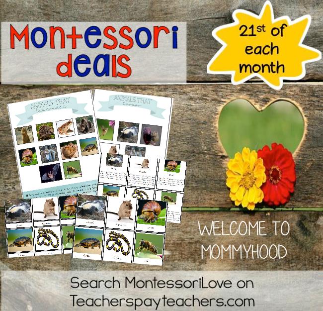 eachers pay Teachers Sale  #MontessoriLove
