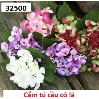 Phu kien hoa pha le o Yen Nghia