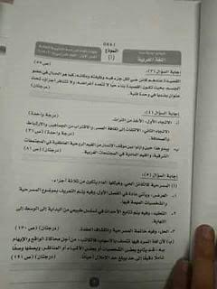 نموذج إجابة امتحان اللغة العربية للثانوية العامة 2019 دور أول 13