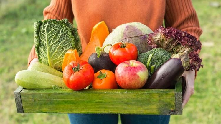 Estudos anteriores sustentaram que uma dieta orgânica tem o potencial de reduzir os pesticidas no corpo através da avaliação da excreção de metabólitos de pesticidas