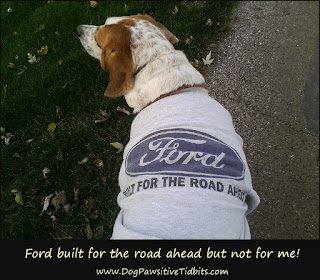 Built for the road ahead but not for dogs!