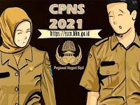 3 Hal yang Wajib Diketahui soal Penerimaan CPNS 2021