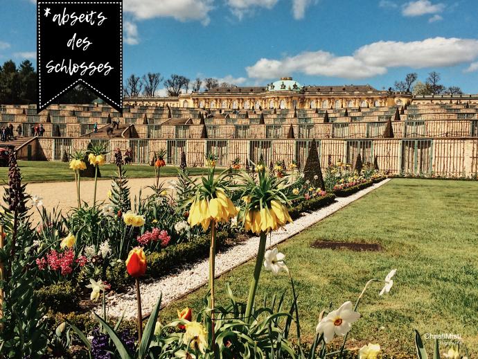 Meine 5 liebsten Orte im Park Sanssouci in Potsdam