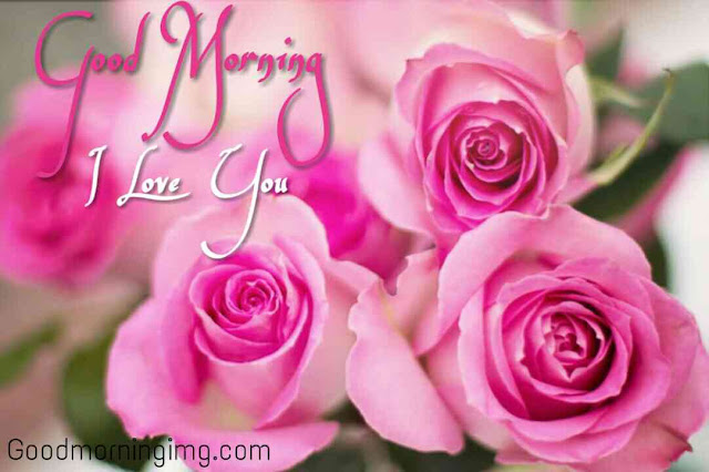 Good morning love rose images