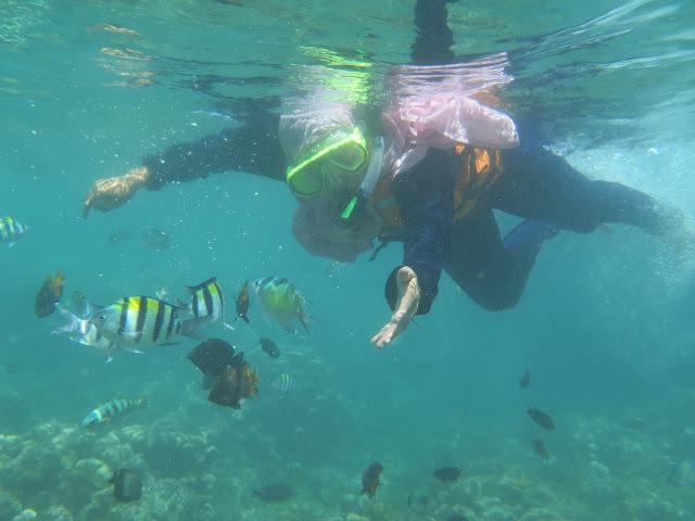 Belajar snorkeling