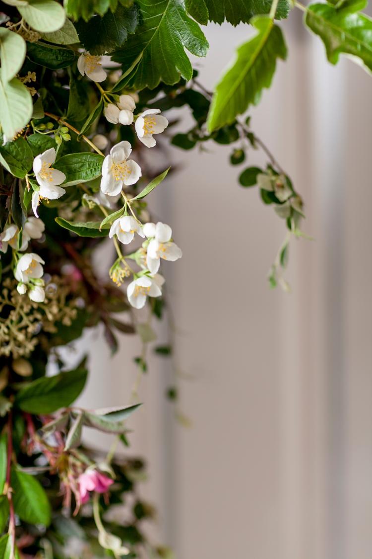 flores blancas de Philadelphus