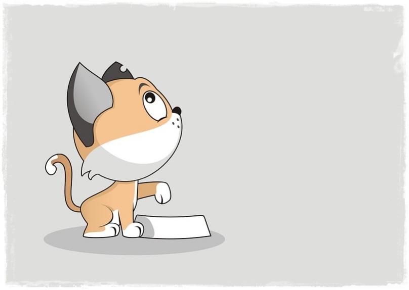 Makanan Berbahaya Untuk Kucing Peliharaan