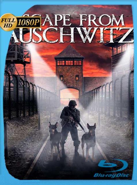 Escape de Auschwitz (2020) HD [1080p] Latino [GoogleDrive] SilvestreHD