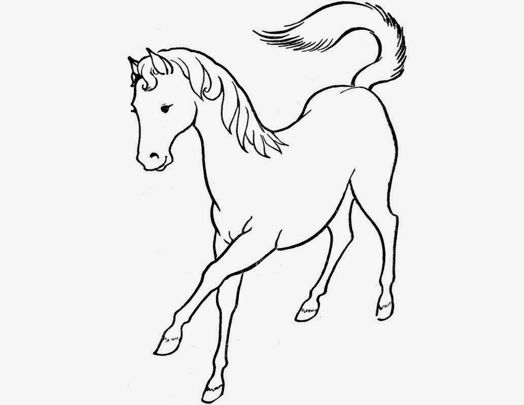 Colour Drawing Free Hd Wallpapers Horse For Kids Coloring