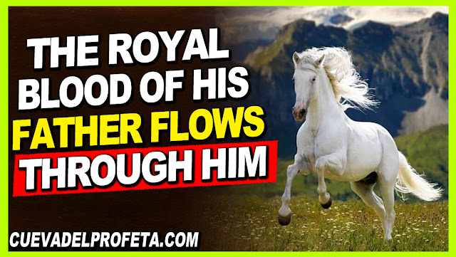 The royal Blood of his Father flows through him - William Marrion Branham