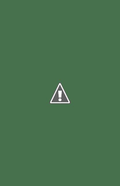 """Versi Lampung Indevenden Survey (LIS) Dendi Ramadhona Marzuki Mengungguli Pasangan M.Nasir- Naldi Rinara Dalam Pilkada 9 Desember- Lampung Independen Survei: """"Elektabilitas & Popularitas Dendi Ramadhona Ungguli M Nasir"""""""