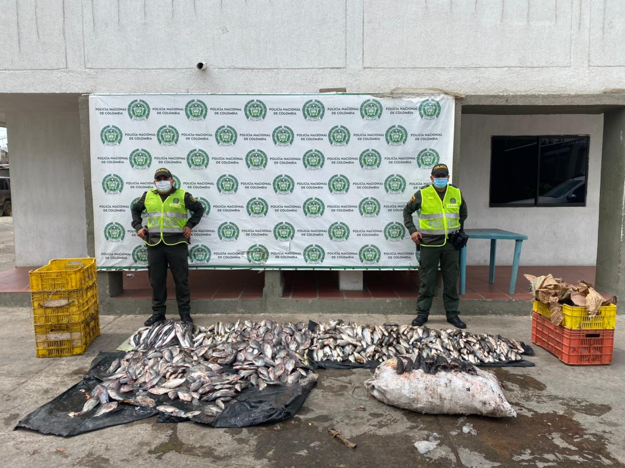 hoyennoticia.com, 80 kilos de pescados incautaron en Maicao