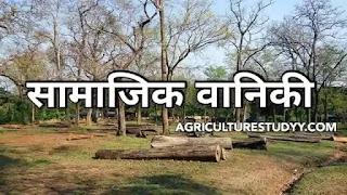 सामाजिक वानिकी (Social forestry in hindi) क्या है इसके प्रकार, उद्देश्य एवं इसका महत्व व कार्य क्षेत्र, सामाजिक वानिकी से आप क्या समझते है, वानिकी,
