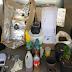 Homem é preso suspeito de possuir laboratório de maconha em Lagarto