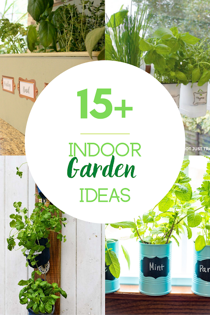 15 indoor garden ideas for your home and office