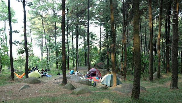 Wisata Hutan Pinus Gunung Pancar Bogor