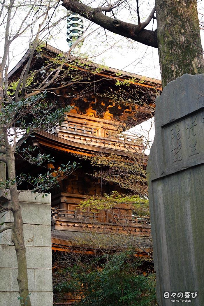 pagode gotoku ji contre plongée