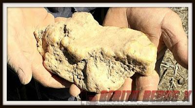 Gumpalan emas di Victoria, Kejadian, Gaya Hidup, tak disangka, Berita Bebas, Berita Terbaru,