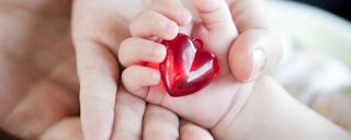 Profil, Jadwal Dokter dan No Telp RS Jantung Harapan Kita untuk Penanganan Darurat