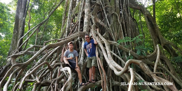 destinasi wisata taman nasional ujung kulon banten