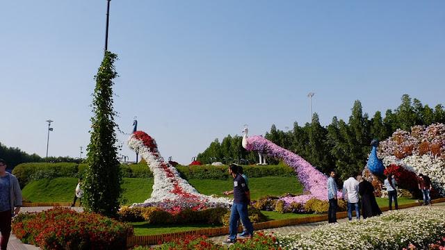 natural flower garden Dubai Mirracle Garden