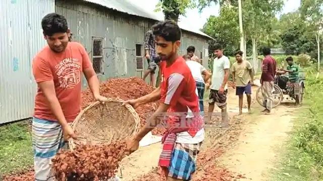 উল্লাপাড়ায় স্বেচ্ছাশ্রমে দেড় কিলোমিটার রাস্তা মেরামত