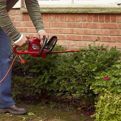 Best Small Gas Hedge Trimmer
