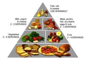 Mempersiapkan Menu Makanan Atlet Sepak Bola