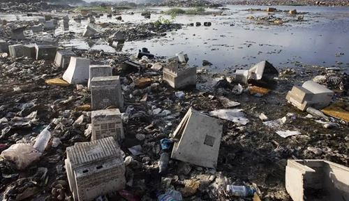 impact-ecological