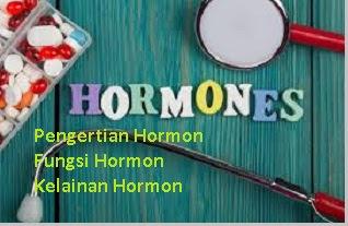 fungsi dan kelainan hormon