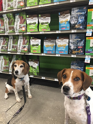 You can find Merrick Fresh Kisses Dental Treats at Petco, Pet Supermarket and boutique retailers.