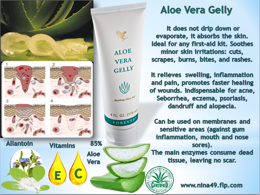 Aloe Vera For Health Amp Beauty Top 10 Products From Flp