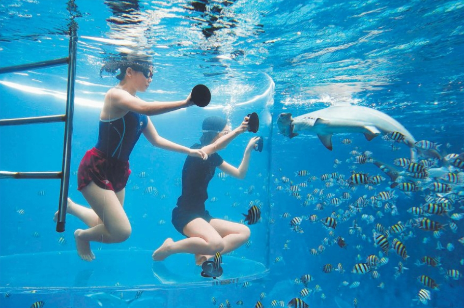 Up close and pesonal: The writer (right) admires a hammerhead shark at Marine Park's Shark Encounter, which will allow visitors to spend 15 minutes underwater gawking at ocean predators.
