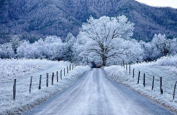 Thời tiết khí hậu ở Mỹ có 4 mùa rõ rệt