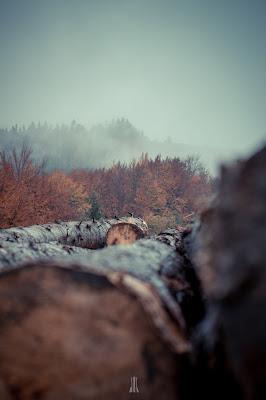 Fotografie toamna Cozmin Virlan baraj paltinu