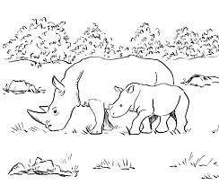 Rhino Familly Coloring Sheet Animals FoR fRee