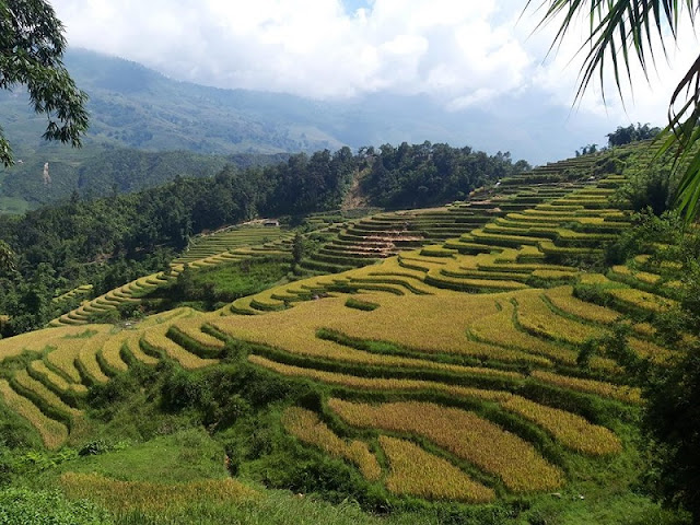 5 most desirable mountains in North Vietnam