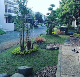 Taman depan minimalis