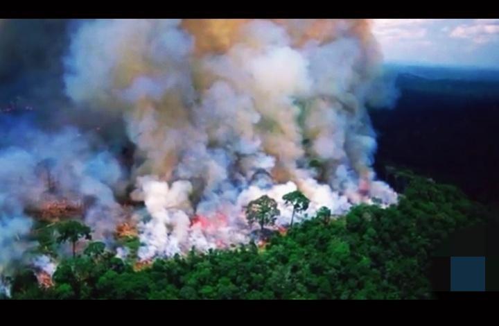 Hutan Amazon Terbakar Paling Parah Dalam Sejarah